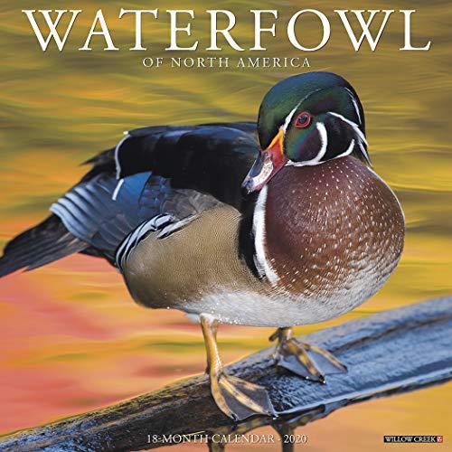 Waterfowl 2020 Wall Calendar