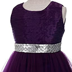 Dressy Daisy Baby Girls\' Sequins Embellishment Flower Girl Pageant Party Dresses Toddler Size 4T Dark Purple