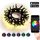 Brizled Bluetooth Smart String Lights, 33ft 100 LED Mini String Lights with iOS and Android App Controller for Mothers Day, Party, Wedding, Christmas Tree, Indoor and Outdoor Decorations, Multicolor