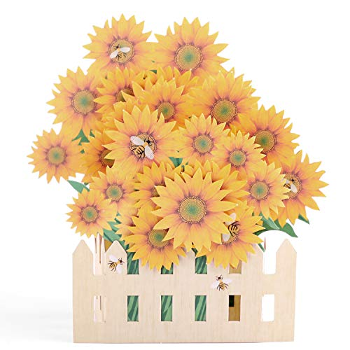 - Paper Spiritz Sunflowers Pop up Cards Birthday, Handmade Graduation Sympathy Blank Card, Anniversary Thank You Card for Husband Daughter Wife, Laser Cut Gift Card with Envelopes all Occasions