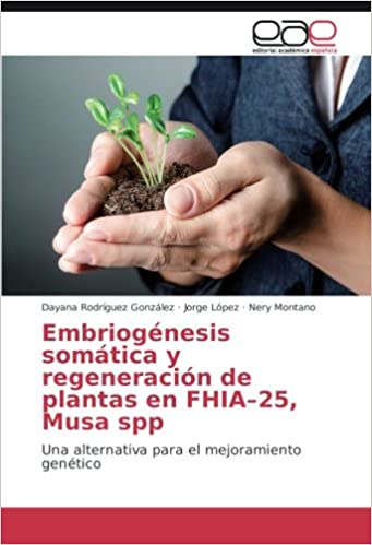 Embriogénesis somática y regeneración de plantas en FHIA-25,