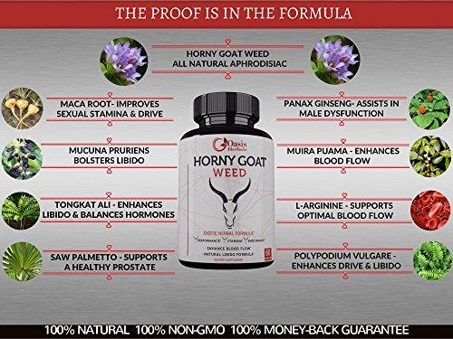 Horny-Goat-Weed-Extract-For-Men-1000mg-with-Maca-Root-Powder-Tongkat-Ali-Muira-Puama-100mg-Icariins-L-Arginine-100-All-Natural-Epimedium-Formula-For-Men-Women-60-Veggie-Caps