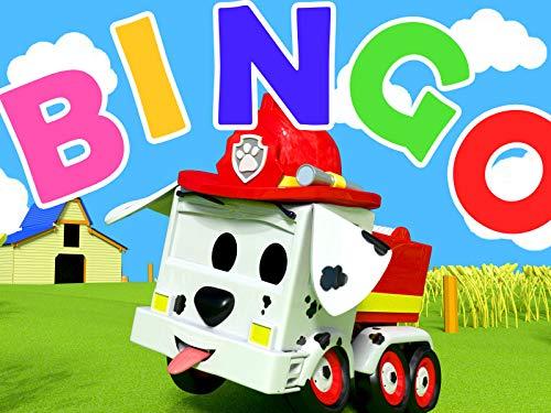 Bingo Melody - Bingo