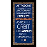 Steiner Sports MLB Houston Astros Subway Sign Wall Art with Authentic Dirt from Minute Maid Park, 9.5x19-Inch