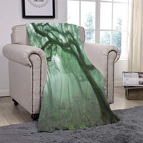 SCOCICI Super Soft Throw Blanket/Farm House Decor,Laurel Forest in Portugal Foggy October Day Wild Magical Exotic Nature Photo Print,Green Brown/for Couch Bed Sofa for Adults Teen Girls Boys