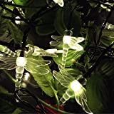 Dragonfly Solar String Lights 33ft 10M 60 LED 2 Modes Fairy Lights with Sensor for Outdoor, Gardens, Homes, Wedding, Christmas, Party and Holiday Decor(Warm White)