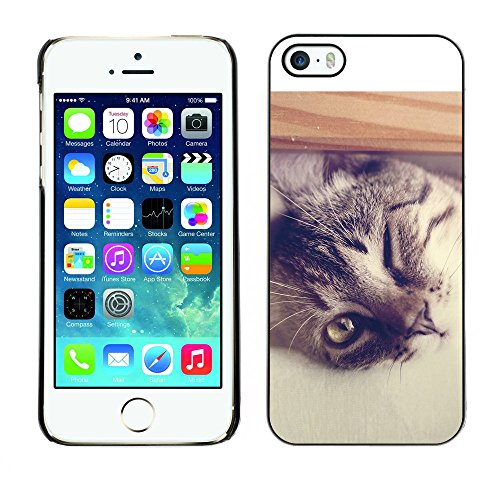 Omega Case PC Polycarbonate Cas Coque Drapeau - Apple iPhone 5 / 5S ( Cool Cat )