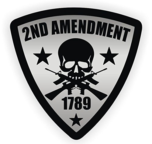 1-Pc Paradisiac Popular 2nd Amendment Skull 1789 Gun Car Stickers Signs Window Decals Bumper Emblem Patriot Permit Size 5