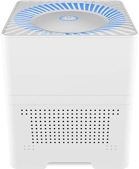 IRIVER BLANK Purificador de Aire 3 in 1 con Prefiltro, Filtro Auténtico HEPA & Filtro de con Generador de Iones Negativos. Limpiador de Aire Personal de Escritorio para Alergias: Amazon.es: Hogar