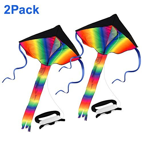 Huge Rainbow Delta Kite, Bestfy 2Pack Easy Flyer 164FT Line Easy to Assemble, One of the Best Kites for Outdoor Games & Activities- Ideal for Kids and Adults, Memorable Fun and Joy with Magic Kite by Bestfy