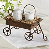 Rustic Watering Can and Bucket in Wagon Salt and Pepper Set by Mud Pie