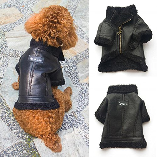 (Binmer(TM) Lovely Pet Dog Clothes Puppy Winter Costume Warm Fashion Leather Zipper Jacket Coat (S, Black))