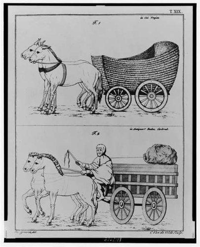 Photo: Woven basket-like cart-Man on wagon drawn by horses -