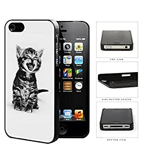 Cute Kitty Cat Portrait Hard Plastic Snap On Cell Phone Case Apple iPhone 4 4s by icecream design