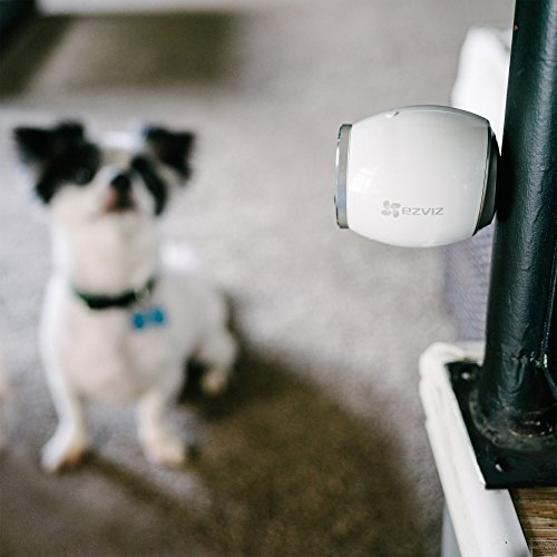 EZVIZ Mini Trooper Wire-Free Indoor / Outdoor Security Camera System with 8GB MicroSD Card, Works with Alexa by EZVIZ (Image #4)