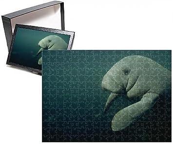 amazon com photo jigsaw puzzle of manatee crystal river florida