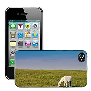 Super Stella Slim PC Hard Case Cover Skin Armor Shell Protection // M00106299 White The Horse Nature Animal // Apple iPhone 4 4S 4G