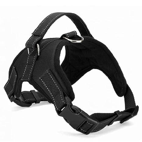 QINGLV Pet Ajustable Collar Suministros para Perros Collar De ...