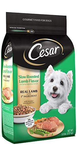 CESAR Slow Roasted Lamb Flavor With Spring Vegetables Garnish Dry Small Breed Dog Food 5 Pounds