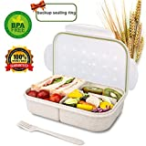Bento Box for Kids Lunch Box Lunch Container for Adults, Leak Proof Bento
