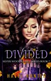 Divided (Silver Wood Coven Book 7): A Paranormal Romance Novel (Volume 7)