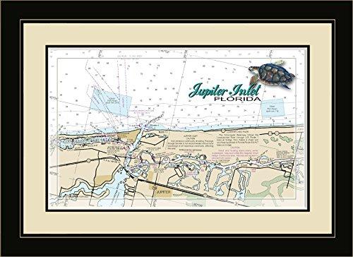 Northwest Art Mall FL-9385 FGDM Jupiter Inlet Turtle Florida Framed Wall Art, 16