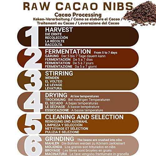 Nibs de Cacao Crudo Ecológico 400 g | 100% Puntas de Cacao Bio, Natural y Puro | Cultivado en Perú a partir de la planta Theobroma cacao | Rico en ...