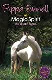 img - for Magic Spirit: 1: The Dream Horse (Tilly's Pony Tails) book / textbook / text book