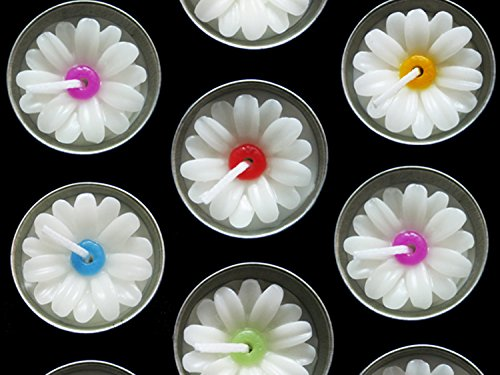 Daisy Scented Candle - 8
