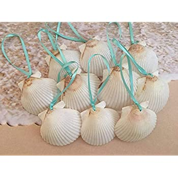 Amazon Com Aerwo 20pcs White Artificial Resin Starfish With Rope