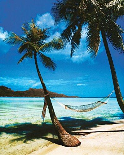 Laminated Tropical Beach Mini Poster