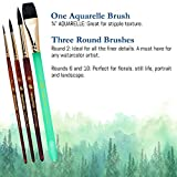 Princeton Neptune Professional Watercolor Brushes