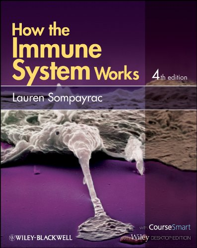 How the Immune System Works Pdf