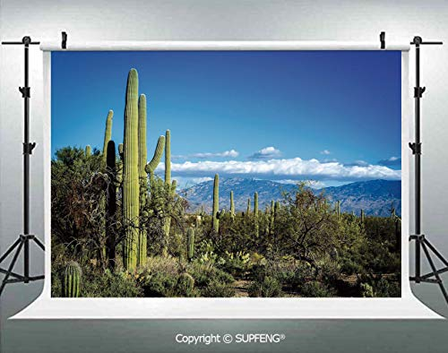 Photo Backdrop Wide View of The Tucson Countryside with Cacti Rural Wild Landscape Arizona Phoenix 3D Backdrops for Interior Decoration Photo Studio Props -