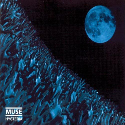 Single Muse (Hysteria)