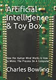 Artificial Intelligence & Toy Box: How the Human Mind Works & How to Mimic The Process On A Computer