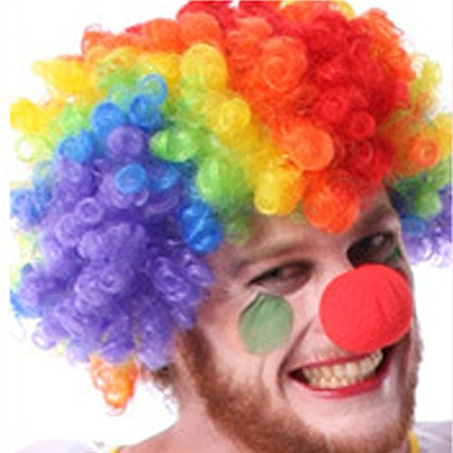 Stylestore Rainbow Afro Clown Wig for Sports Fan,Cheerleaders, Carnival, Cosplay, Halloween, (Adult Clown Wig)