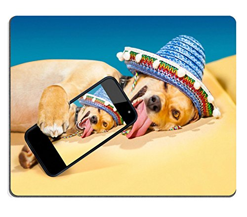 msd-customized-natural-rubber-mouse-pad-personalized-custom-picture-drunk-chihuahua-dog-taking-a-sel