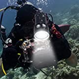 Professional Diving Flashlight,Bright LED Diving Light Underwater Photography Fill Light,with 100 Meters Waterproof