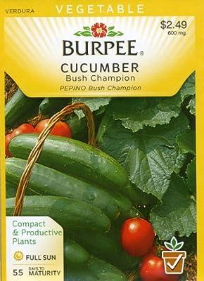Burpee 66738 Cucumber Bush Champion Seed Packet