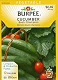 Burpee 66738 Cucumber Bush Champion Seed Packet