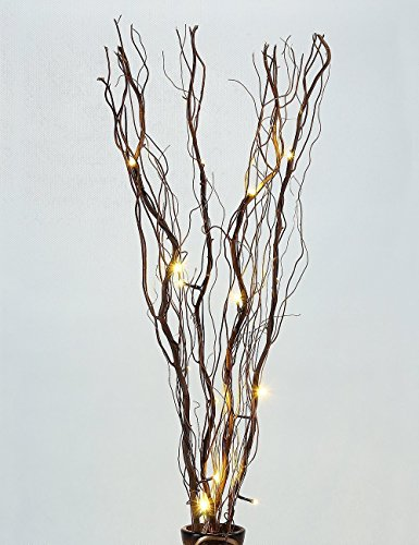 Lighted Natural Branch