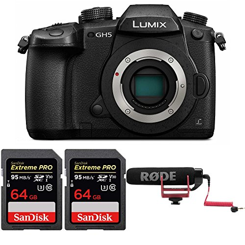 Panasonic Lumix GH5 4K Mirrorless w/ Rodge VideoMic GO & 2X