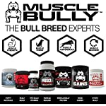 Vita Bully Vitamins for Bully Breeds: Pit Bulls, American Bullies, Exotic Bullies, Bulldogs, Pocket Bullies, Made in The USA. (60 Vitamins) 12