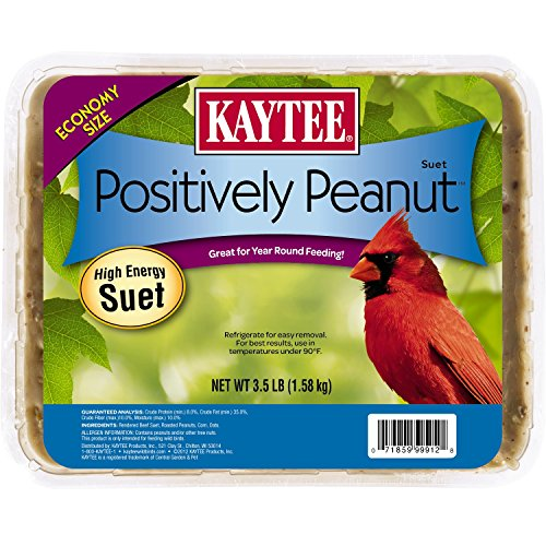 Kaytee Peanut - Kaytee Pet Products Bkt51122 Suet Cake Peanut Pet Food, 11-Ounce