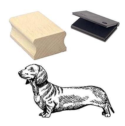 perro salchicha de pelo corto » Diseño sello con cojín ...