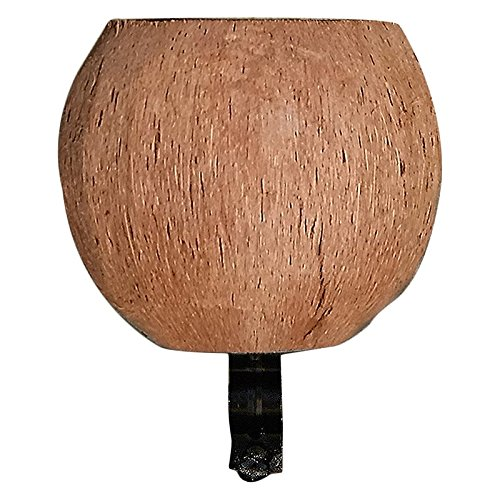 Cruiser Candy Coconut Cup Holder, No Face