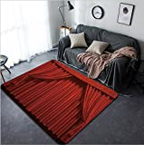 Vanfan Design Home Decorative 71481181 Theater curtain Presentation Movies Modern Non-Slip Doormats Carpet for Living Dining Room Bedroom Hallway Office Easy Clean Footcloth
