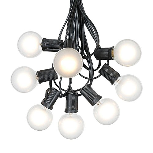 G40 Patio String Lights with 25 Frosted Globe Bulbs - Hanging Garden String Lights - Vintage Backyard Patio Lights - Outdoor String Lights - Market Cafe String Lights - Black Wire - 25 Foot