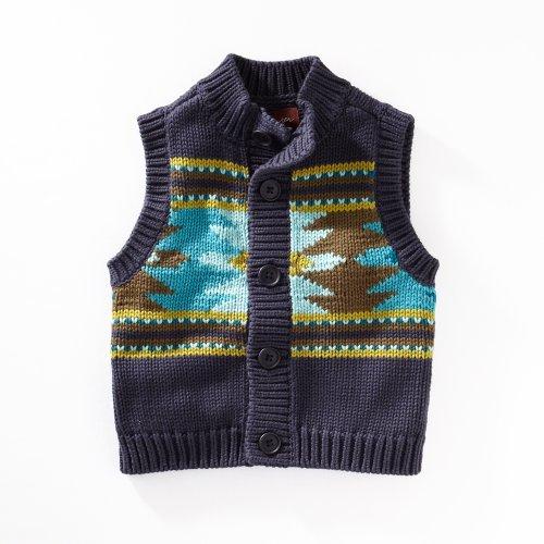 Tea Collection Baby Boys' Alegre Aztec Sweater Vest
